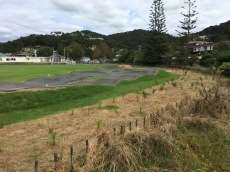 /skateparks/new-zealand/paihia-bump-track/