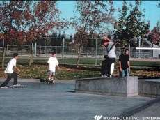 /skateparks/united-states-of-america/pleasanton-skate-park/