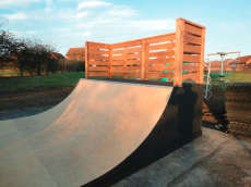 Walnut Tree Mini Ramp