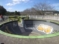/skateparks/japan/annaka-bowl/