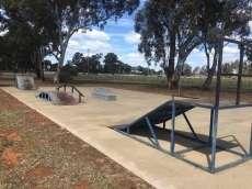 Ariah Park Skatepark