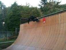 /skateparks/united-states-of-america/berkeley-vert-ramp/