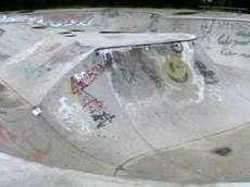 Berry Skatepark
