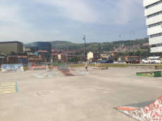 Botica Vieja Skatepark