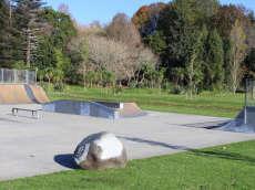 Carlton Park Skatepark