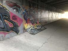 Graf Wallride