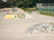 Ladner Skate Park