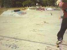 Lota Skate Park