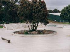 New Plymouth Skate Park