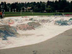 New Westminster Skate Park